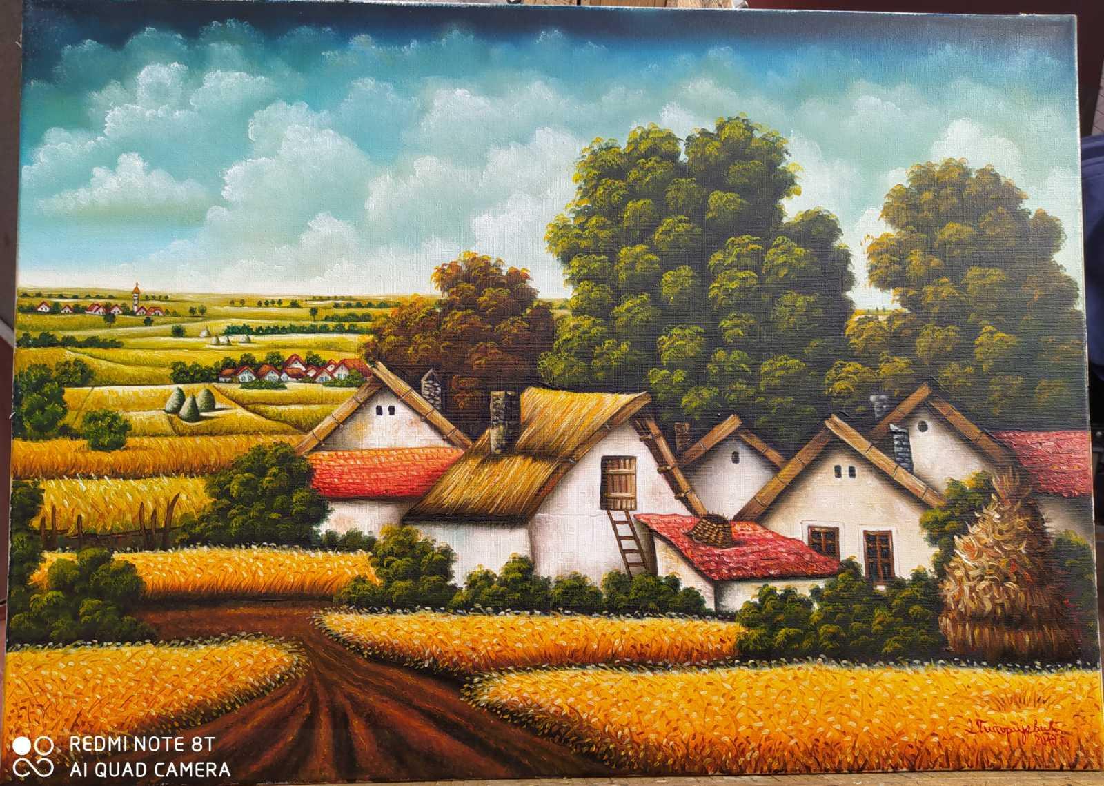 Žitno polje, 70x50, 130 evra